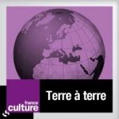 culture_terre_a_terre